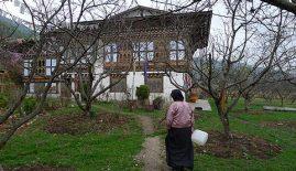 Dorjibi Homestay Lodge