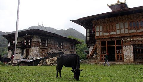 Ngalhakhang Aj Heritage Farmstay