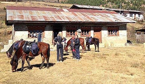 ellis_testimonials15, travel to bhutan, bhutan homestay, bhutanese tour operators, bhutan travel, testimonials, cultural tours, trekking, east bhutan, merak sakteng, horse riding in Bhutan