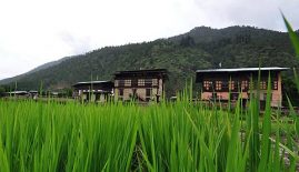 The Village Lodge Paro
